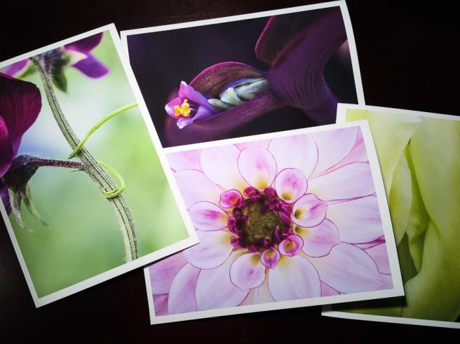 Greens_&_Purples.jpg