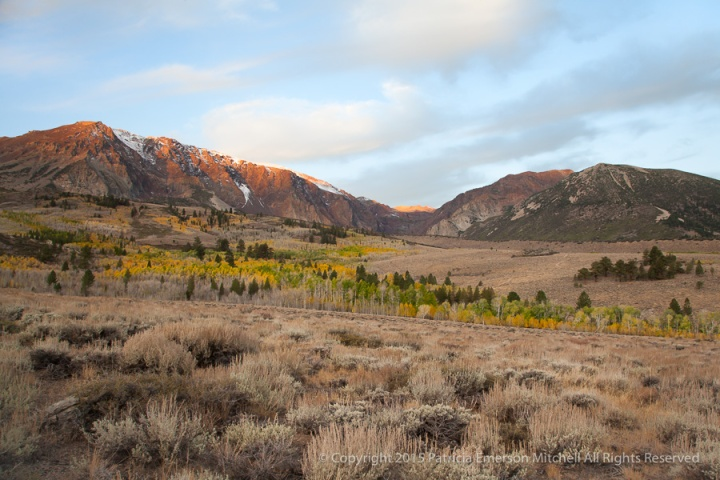 Morning_in_the_Eastern_Sierra,_10.11.15