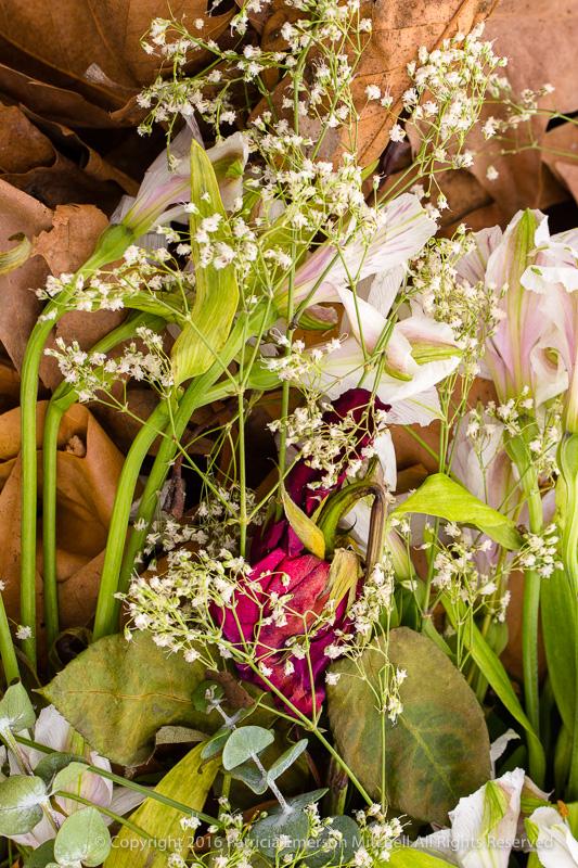 Yard_Clipping_Bouquet,_12.7.16.jpg