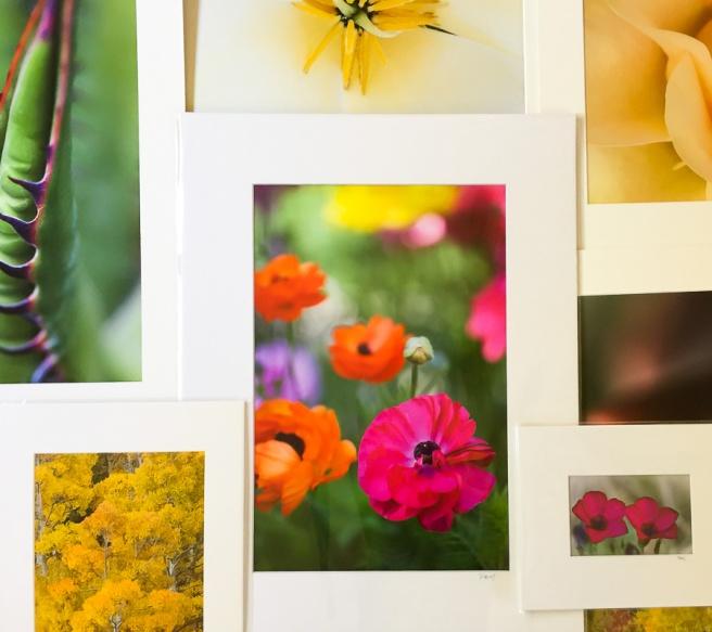 PhotoSampler.jpg