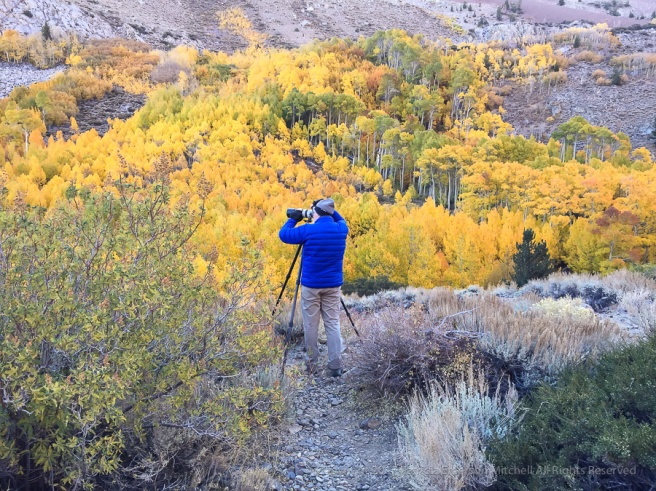 Dan_&_The_Aspens,_10.9.17.jpg