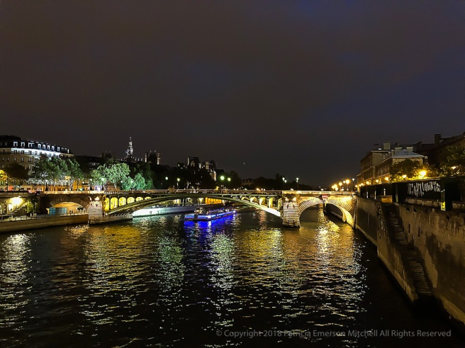 The_Seine_at_Night.jpg