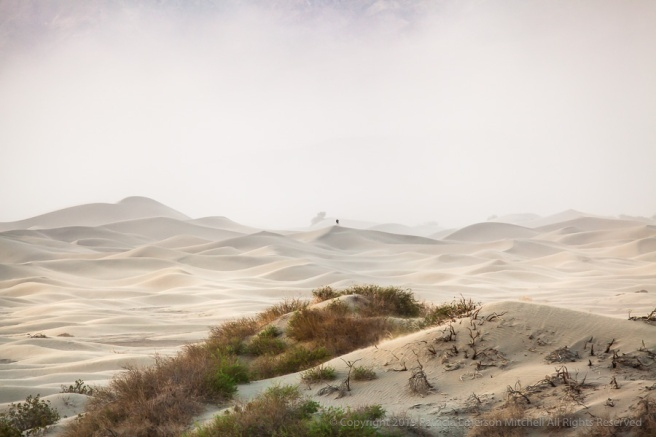 Photographer_in_a_Dust_Storm_on_the_Dunes,_4.2.19.jpg