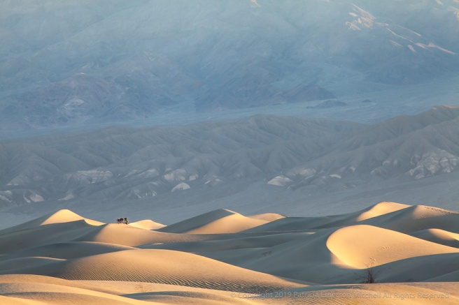 Photographers_at_Sunrise_on_the_Dunes,_4.3.19.jpg